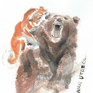 bear04_396331.jpg