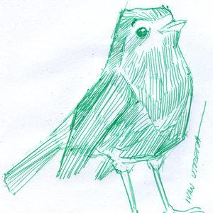 bird01_397532.jpg