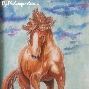 caballo_cafYo_404094.jpeg