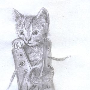 cat13_404006.jpg