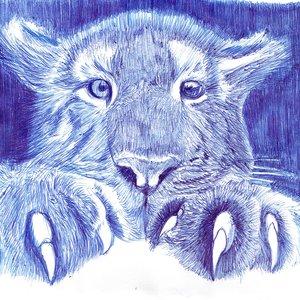 tiger12_405253.jpg