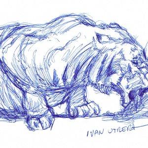 tiger10_408127.jpg