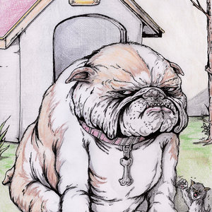 Bulldoggie_383508.jpg