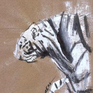 tiger05_408913.jpg