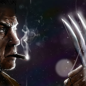 Wolverine_413297.jpg