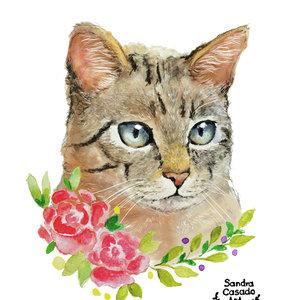 cat2_388317.jpg