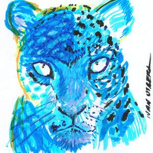 jaguar01_388492.jpg