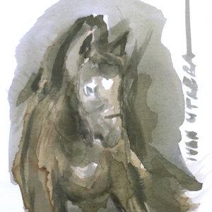 horse14_391080.jpg