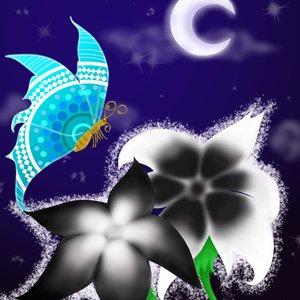 yin.yang_.flowers.night__429807.png