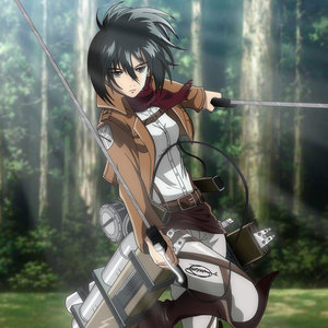 Attack_on_Titan___Mikasa_Ackerman_432265.jpg