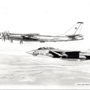 F14_Tu95_a_436398.jpg