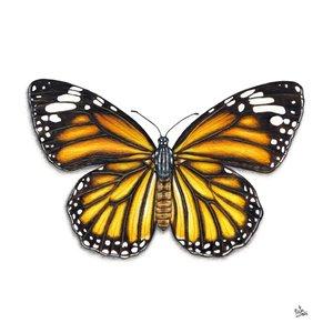 mariposa_monarca_436645.jpg
