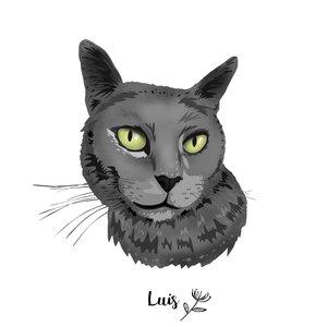 LUIS_C_437482.jpg