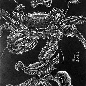 蟹と花 Cangrejo y flor