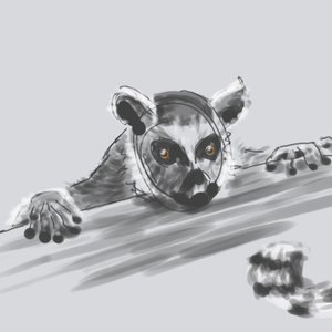 lemur_419668.png