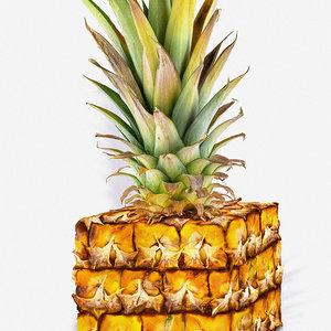 Pineapple_cube_low_450369.jpg