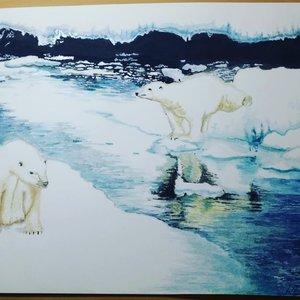 PolarLifes