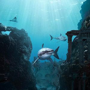 Deep_Ocean_1000px_454665.jpg