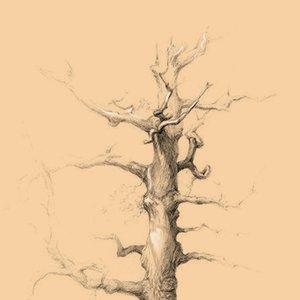 Arbol sketch