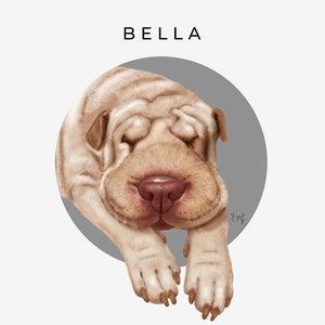 BELLA_CARA_baja_455799.jpg