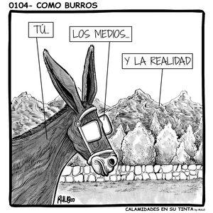 0104_Como_burros_455859.jpg