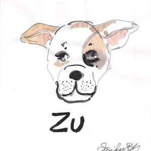 Zu_422278.jpg