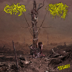 Cover for Gore and SWM (Split)