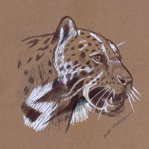 leopardo a lapicero