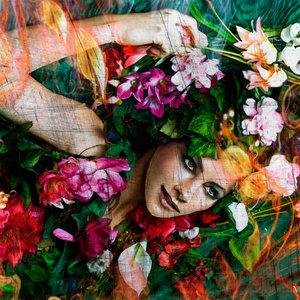Flores_427161.jpg