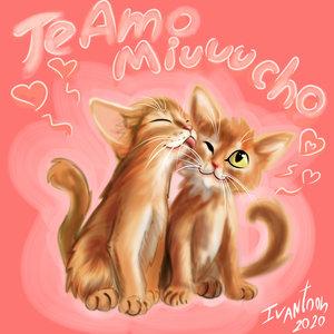 TE_AMIUU_MUCHO_427612.jpg