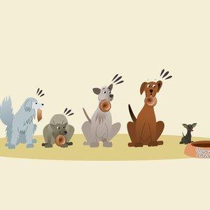 mascotas2_467356.png