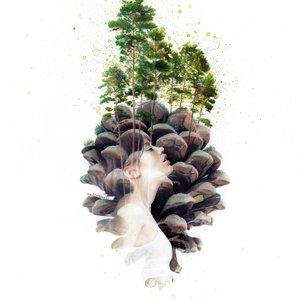 Mentiradeloro_serendipity_Valsain_pine_forest_475018.jpg