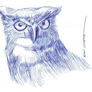 owl04_475036.jpg