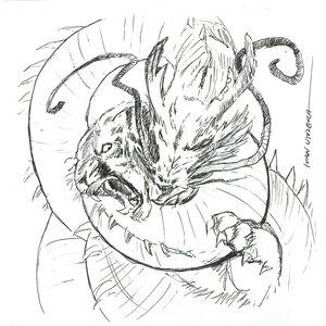 dragon07_475498.jpg