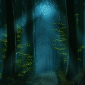 Enchanted_forest_Background_Practice_463658.png