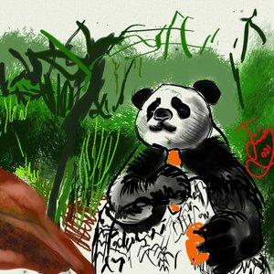 panda_463815.jpg