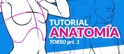 Como_dibujar_el_cuerpo_humano_paso_a_paso_parte_1_torso_Guz_Artema_437293.jpg