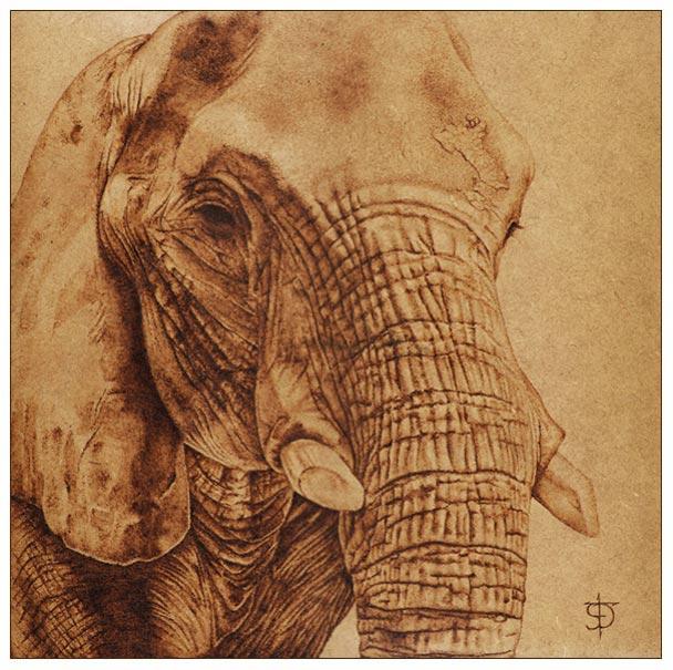 Elefante_Pirograbado_4785.jpg