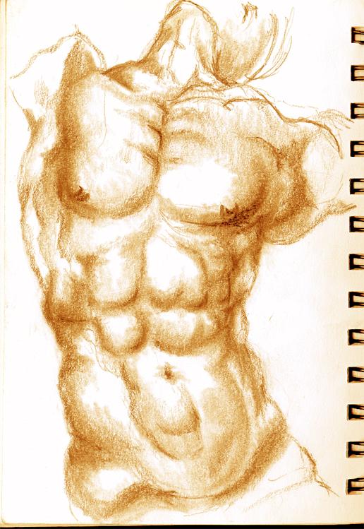 Estudios de anatomía III por Royalfiery | Dibujando