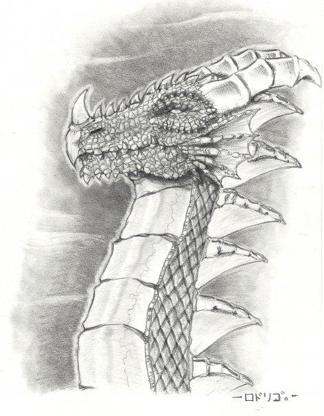 Dragoncito_9112.jpg