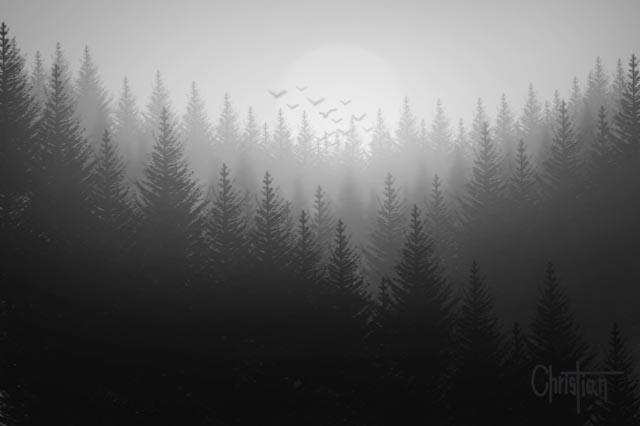 invierno_oscuro_11238.jpg