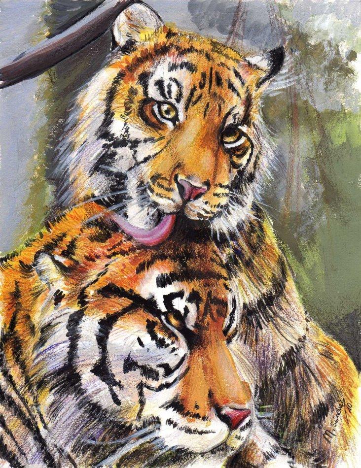 Tigres! por Hisaki-Chan | Dibujando
