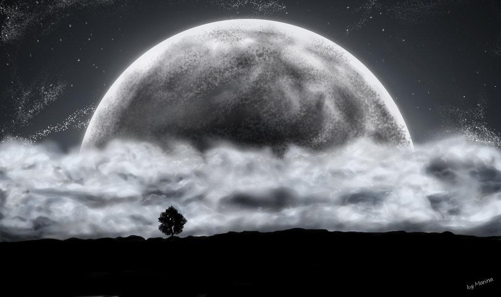 Luna_Moon_2242.jpg