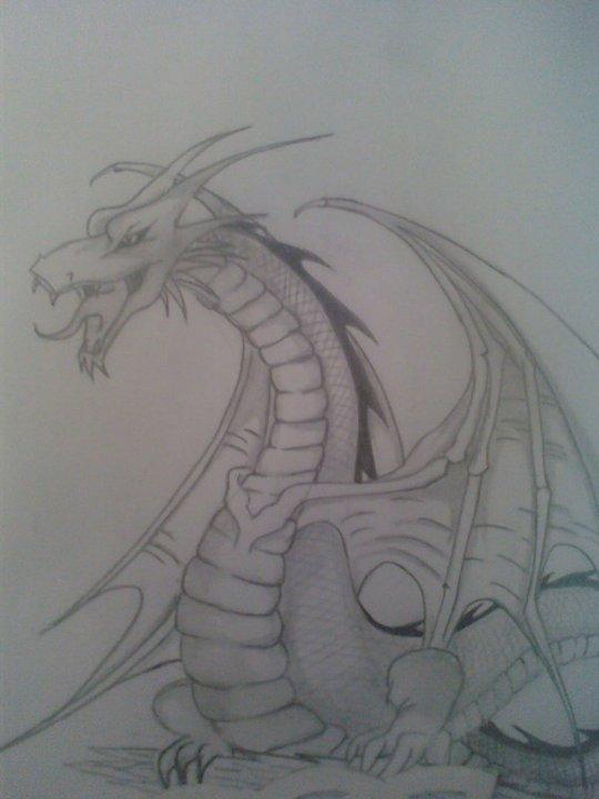 Dragon_20052.jpg