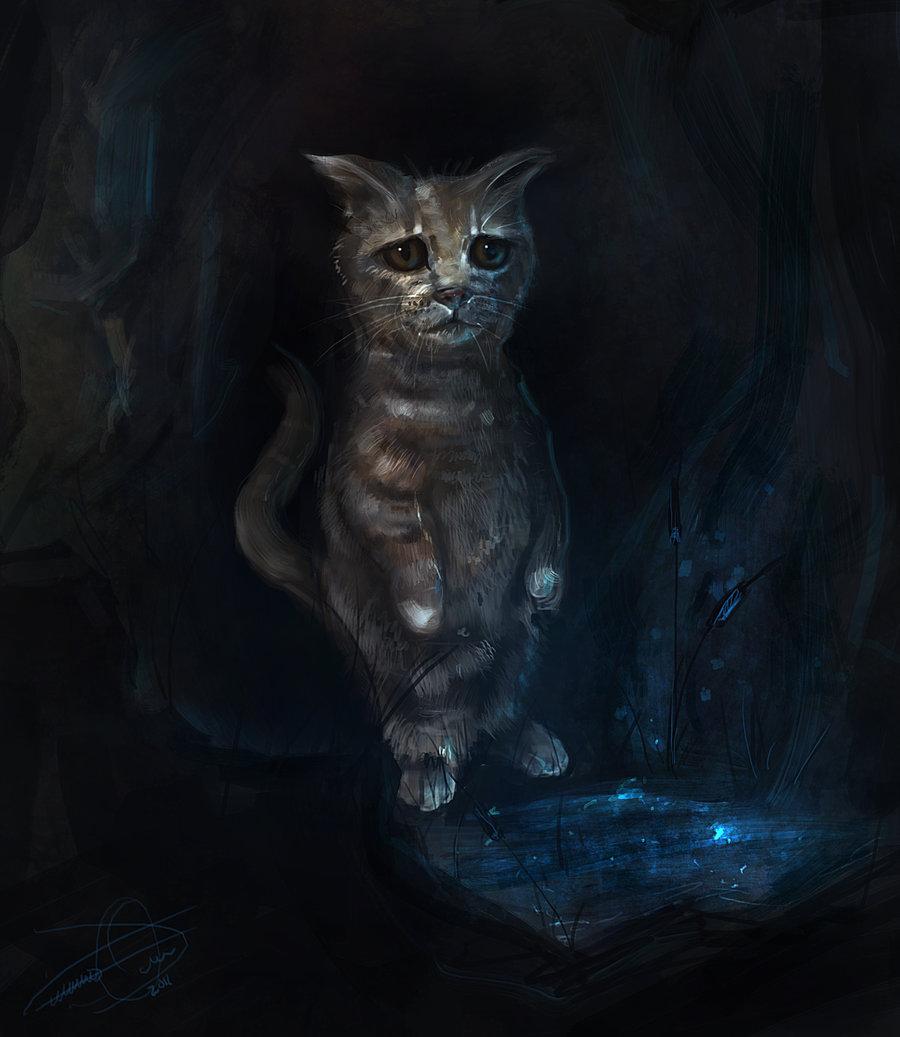 Cat Este Nota  La Uklevels