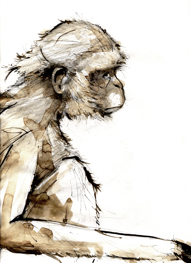 Monkey_ink_and_coffee_14307.jpg