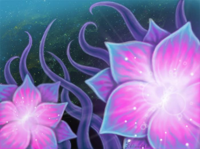 pink_lotus_22172.jpg