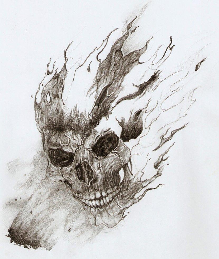 skull_15561.jpg