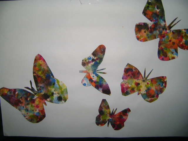 interior_de_mariposas_37017.JPG