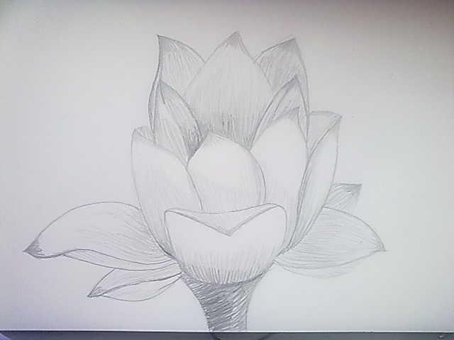 Dibujo Y Pintura Dibujos A Lapiz